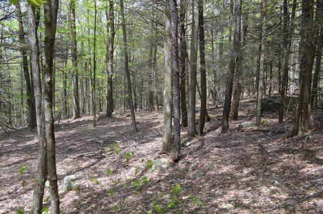 Lot 19 Pike Ln, Greentown, PA 18426 (MLS #19-2077) :: McAteer & Will Estates | Keller Williams Real Estate