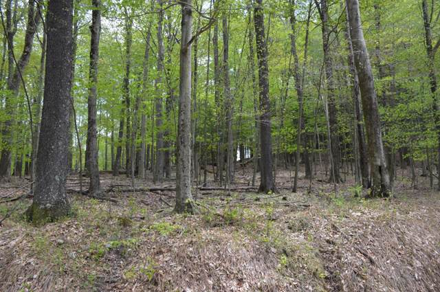 Lot 281R Fawnwood Dr, Greentown, PA 18426 (MLS #19-2079) :: McAteer & Will Estates | Keller Williams Real Estate
