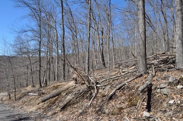 River View Dr, Lackawaxen, PA 18428 (MLS #19-2124) :: McAteer & Will Estates | Keller Williams Real Estate