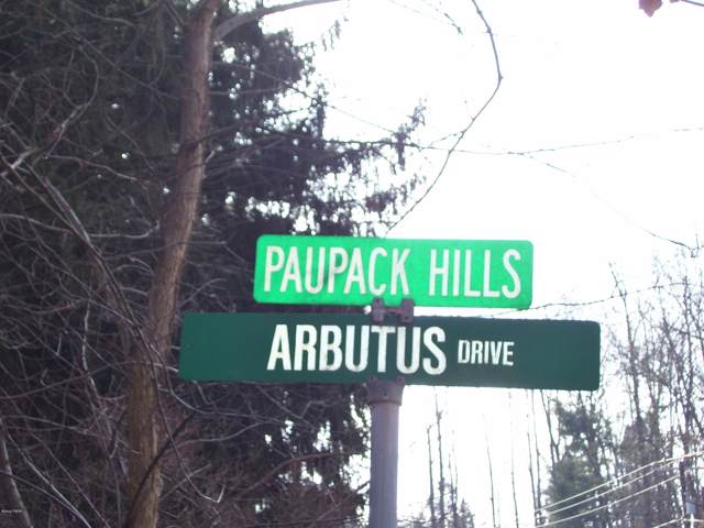 Lot 4 Arbutus & Blueberry, Paupack, PA 18451 (MLS #19-225) :: McAteer & Will Estates | Keller Williams Real Estate