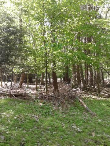 92 Cardinal Ct, Lakeville, PA 18438 (MLS #19-2272) :: McAteer & Will Estates   Keller Williams Real Estate