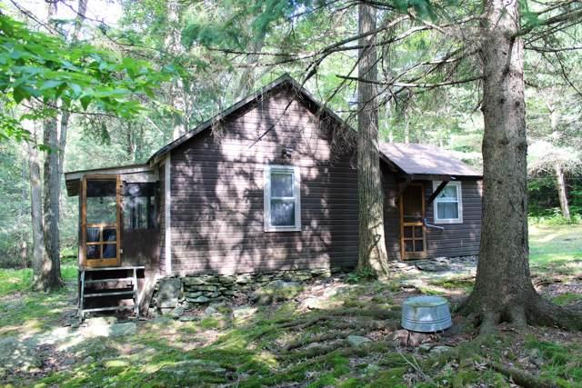 165 N Shore Rd, Greentown, PA 18426 (MLS #19-3463) :: McAteer & Will Estates | Keller Williams Real Estate