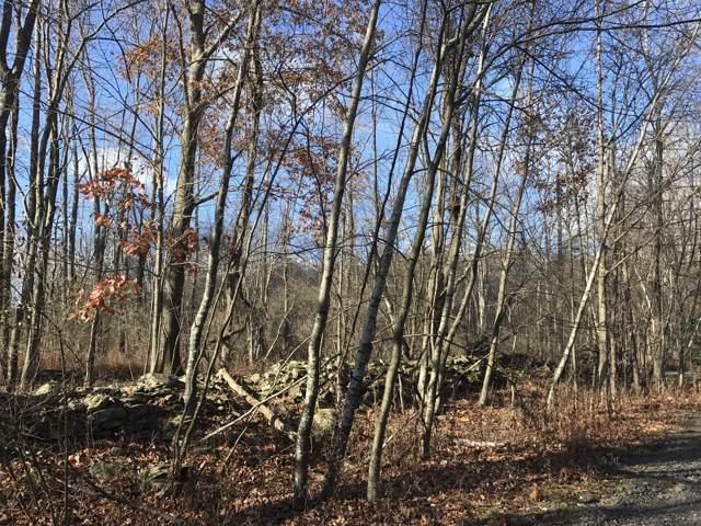 Monticello, Lake Ariel, PA 18436 (MLS #19-389) :: McAteer & Will Estates   Keller Williams Real Estate
