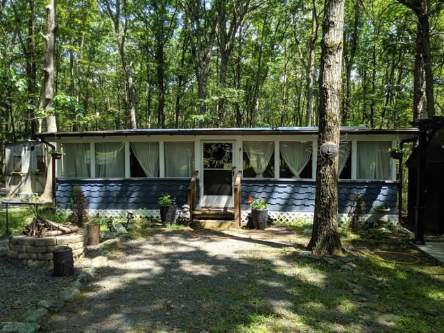 114 Tribes Dr, Shohola, PA 18458 (MLS #19-3894) :: McAteer & Will Estates | Keller Williams Real Estate