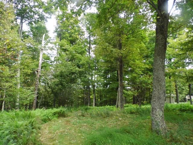 Skyview Ter, Greentown, PA 18426 (MLS #19-4754) :: McAteer & Will Estates | Keller Williams Real Estate