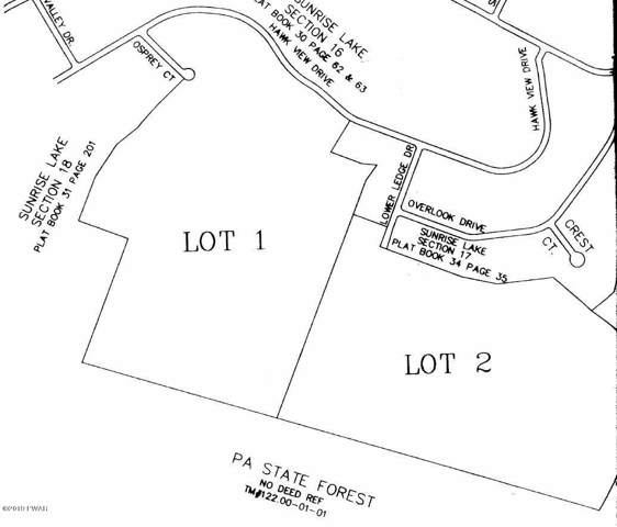 Osprey Lot 1 Ct, Milford, PA 18337 (MLS #19-4868) :: McAteer & Will Estates | Keller Williams Real Estate
