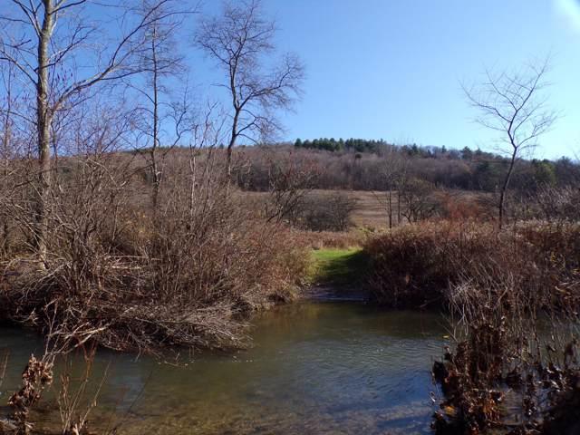 426 Big Hollow Rd, Deposit, NY 13754 (MLS #19-4878) :: McAteer & Will Estates | Keller Williams Real Estate