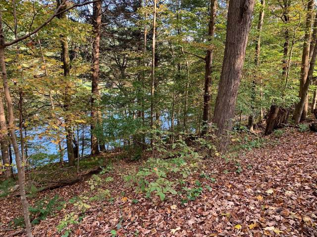 848 River Rd, Deposit, NY 13754 (MLS #19-4955) :: McAteer & Will Estates | Keller Williams Real Estate