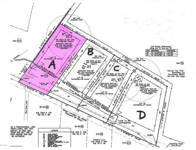 Owego (Lot A) Tpke, Honesdale, PA 18431 (MLS #19-5048) :: McAteer & Will Estates | Keller Williams Real Estate