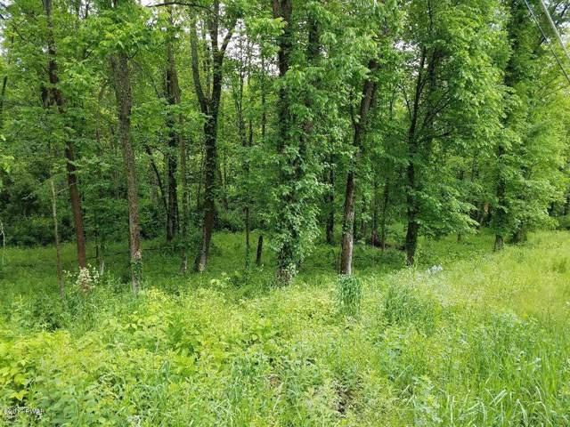 Owego (Lot B) Tpke, Honesdale, PA 18431 (MLS #19-5049) :: McAteer & Will Estates | Keller Williams Real Estate