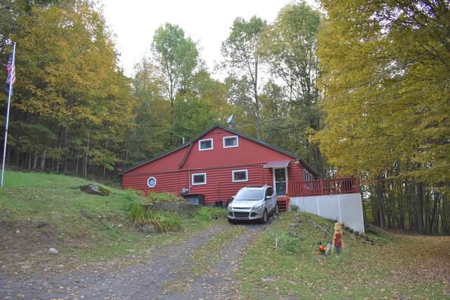 1737 Harford Rd, New Milford, PA 18834 (MLS #20-1095) :: McAteer & Will Estates | Keller Williams Real Estate