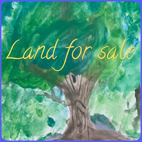 Lot 2402 Conashaugh Trl, Milford, PA 18337 (MLS #20-1311) :: McAteer & Will Estates | Keller Williams Real Estate