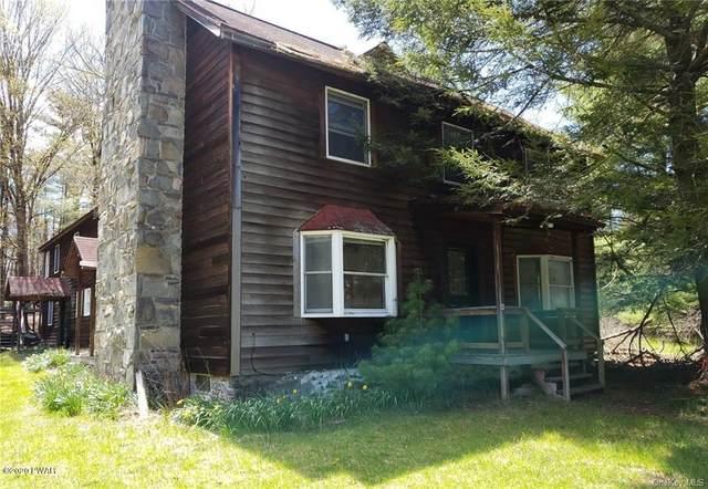 45 Beaver Brook RD, Yulan, NY 12792 (MLS #20-1590) :: McAteer & Will Estates | Keller Williams Real Estate