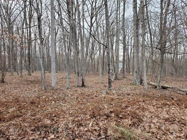 Lot 59 Deer Trail Dr, Hawley, PA 18428 (MLS #20-166) :: McAteer & Will Estates | Keller Williams Real Estate