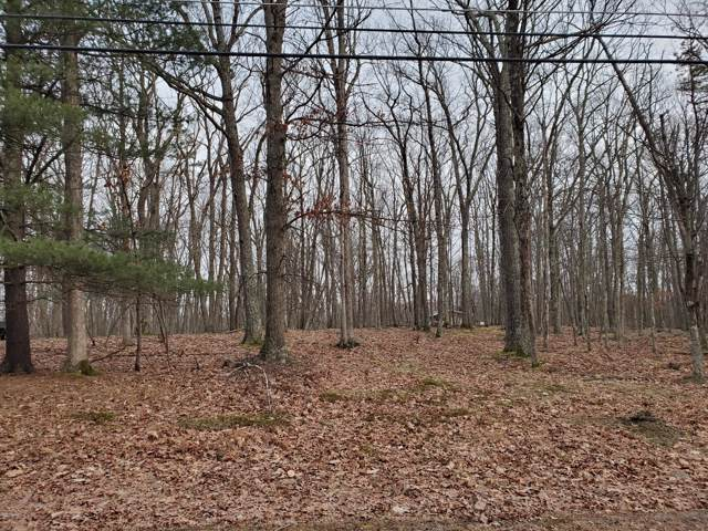 Lot 63 Forest Ridge Dr, Hawley, PA 18428 (MLS #20-168) :: McAteer & Will Estates | Keller Williams Real Estate