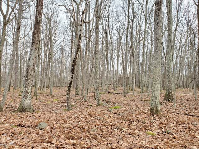 Lot 36 Forest View Dr, Hawley, PA 18428 (MLS #20-169) :: McAteer & Will Estates | Keller Williams Real Estate