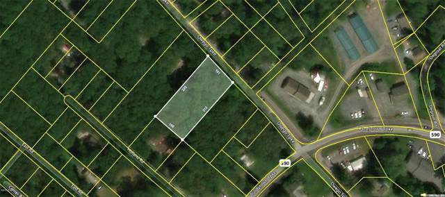 Owego Tpke, Hawley, PA 18428 (MLS #20-170) :: McAteer & Will Estates | Keller Williams Real Estate
