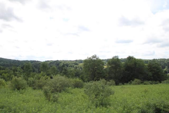 36 All Saints Pl, Equinunk, PA 18417 (MLS #20-171) :: McAteer & Will Estates | Keller Williams Real Estate