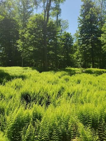 128 Mountain Dr, Greentown, PA 18426 (MLS #20-1902) :: McAteer & Will Estates   Keller Williams Real Estate