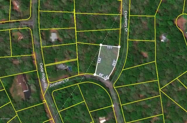 Juneberry & Elderberry Dr, Hawley, PA 18428 (MLS #20-2015) :: McAteer & Will Estates | Keller Williams Real Estate