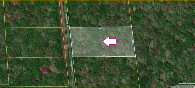 105 Mountain Top Rd, Lackawaxen, PA 18435 (MLS #20-2135) :: McAteer & Will Estates | Keller Williams Real Estate