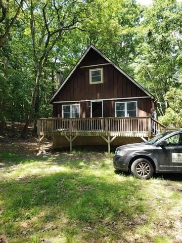 207 Wild Acres Dr, Dingmans Ferry, PA 18328 (MLS #20-2180) :: McAteer & Will Estates | Keller Williams Real Estate