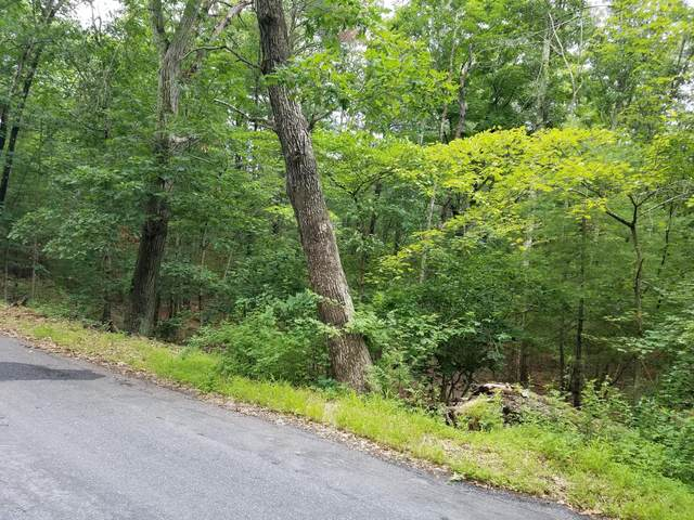 Lot 3 Sproul Rd., Dingmans Ferry, PA 18328 (MLS #20-2428) :: McAteer & Will Estates | Keller Williams Real Estate