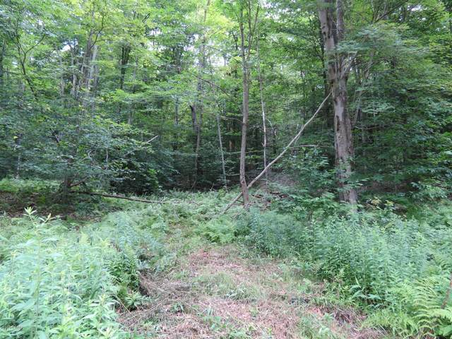 Address Not Published, Greentown, PA 18426 (MLS #20-2439) :: McAteer & Will Estates | Keller Williams Real Estate