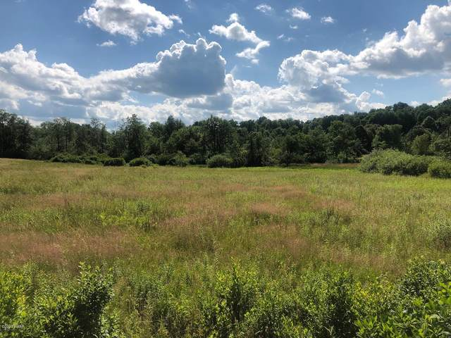 Gridline Rd, Honesdale, PA 18431 (MLS #20-2490) :: McAteer & Will Estates | Keller Williams Real Estate