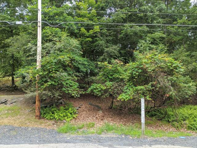 Lot 37 Heather Hill Rd, Dingmans Ferry, PA 18328 (MLS #20-2508) :: McAteer & Will Estates | Keller Williams Real Estate