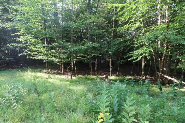 58 Lakeshore Dr, Lakeville, PA 18438 (MLS #20-2577) :: McAteer & Will Estates | Keller Williams Real Estate