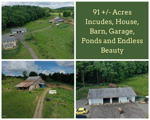 67 E Sterling Rd, Newfoundland, PA 18445 (MLS #20-2615) :: McAteer & Will Estates | Keller Williams Real Estate