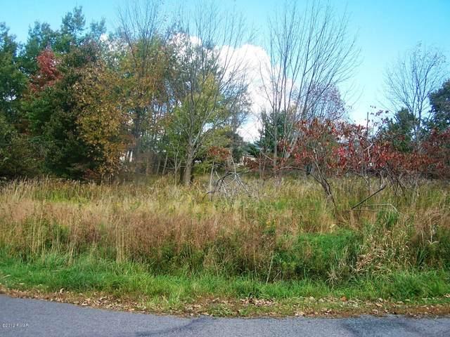 78 Grandview Dr, Lake Ariel, PA 18436 (MLS #20-3036) :: McAteer & Will Estates | Keller Williams Real Estate