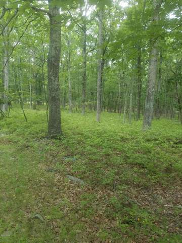 lot 39 Spring Dr, Bushkill, PA 18328 (MLS #20-3095) :: McAteer & Will Estates | Keller Williams Real Estate