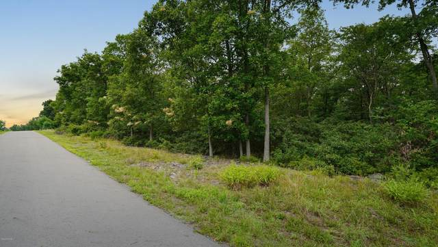 44 Blue Heron Way Way, Hawley, PA 18428 (MLS #20-3163) :: McAteer & Will Estates | Keller Williams Real Estate
