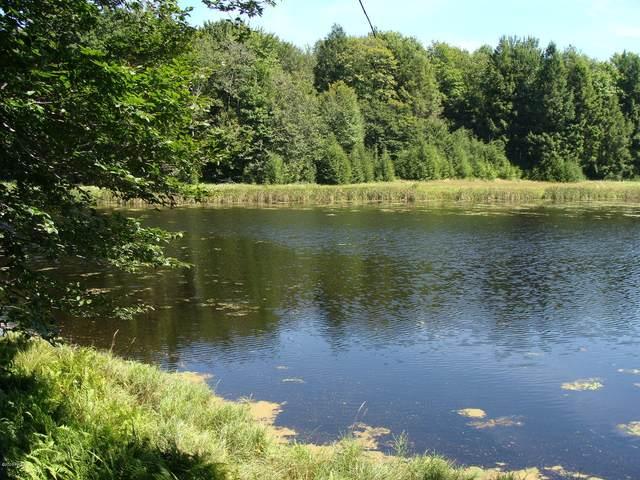 Lot 1405 Lakeside Dr, Greentown, PA 18426 (MLS #20-3242) :: McAteer & Will Estates | Keller Williams Real Estate