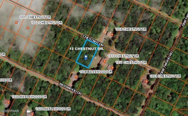 12 Chestnut Dr, Newfoundland, PA 18445 (MLS #20-3279) :: McAteer & Will Estates | Keller Williams Real Estate