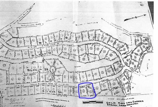 Orange Blossom Rd, Milford, PA  (MLS #20-3617) :: McAteer & Will Estates | Keller Williams Real Estate