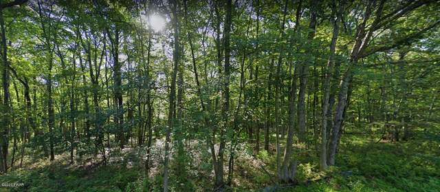 Lot 11 Vallone Way, Hawley, PA 18428 (MLS #20-3829) :: McAteer & Will Estates | Keller Williams Real Estate