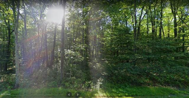 Lot 12 Vallone Way, Hawley, PA 18428 (MLS #20-3830) :: McAteer & Will Estates | Keller Williams Real Estate