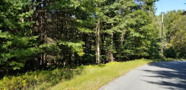 Lot 83 Cushetunk Dr, Narrowsburg, NY 12764 (MLS #20-4049) :: McAteer & Will Estates | Keller Williams Real Estate