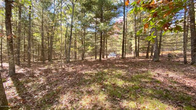 10 Deer Hollow Rd, Lackawaxen, PA 18435 (MLS #20-4070) :: McAteer & Will Estates | Keller Williams Real Estate
