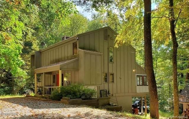 4618 Ny-97, Narrowsburg, NY 12764 (MLS #20-4112) :: McAteer & Will Estates | Keller Williams Real Estate