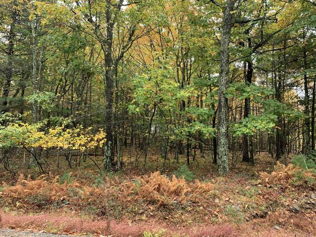 Lot 316 Nelson Rd, Milford, PA 18337 (MLS #20-4189) :: McAteer & Will Estates | Keller Williams Real Estate