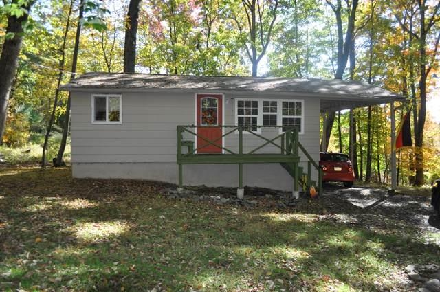 216 Spruce Dr, Dingmans Ferry, PA 18328 (MLS #20-4194) :: McAteer & Will Estates | Keller Williams Real Estate