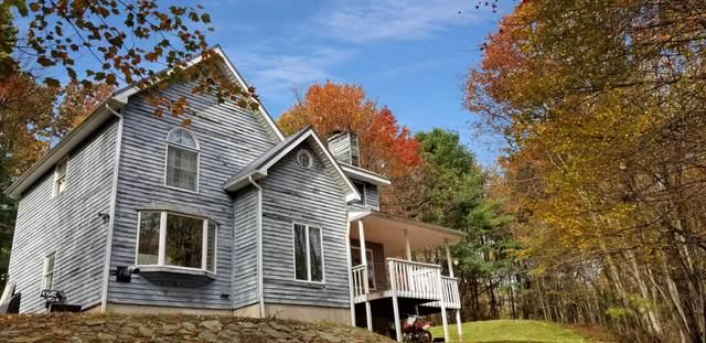 105 Black Bear Trl, Milford, PA 18337 (MLS #20-4251) :: McAteer & Will Estates | Keller Williams Real Estate