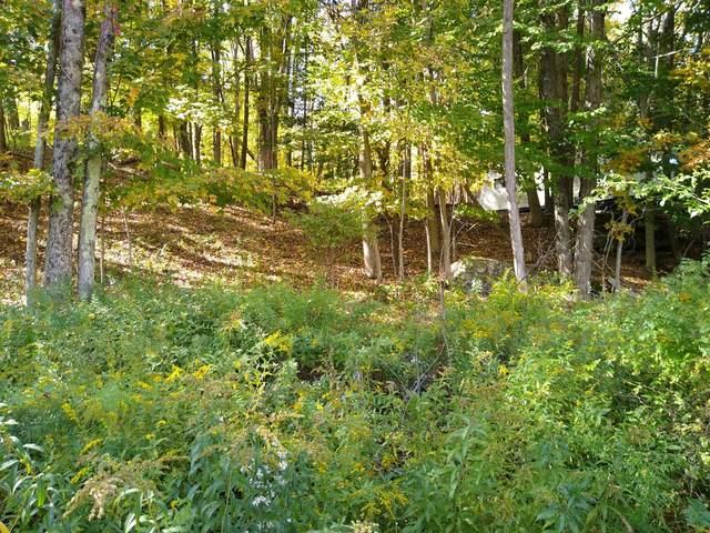 Lakeside Ave, Honesdale, PA 18431 (MLS #20-4281) :: McAteer & Will Estates | Keller Williams Real Estate