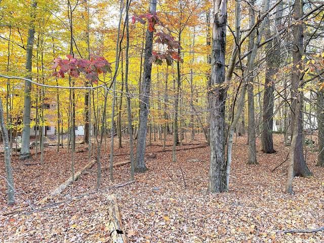 426 N Gate Rd, Lake Ariel, PA 18436 (MLS #20-4302) :: McAteer & Will Estates | Keller Williams Real Estate