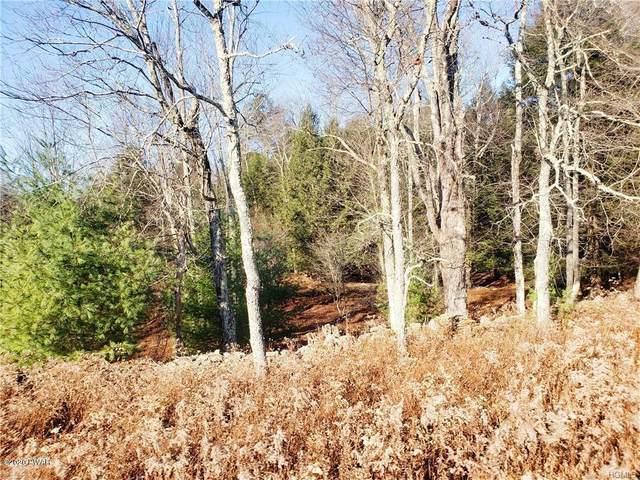 Benmosche Rd, Monticello, NY 12701 (MLS #20-469) :: McAteer & Will Estates | Keller Williams Real Estate