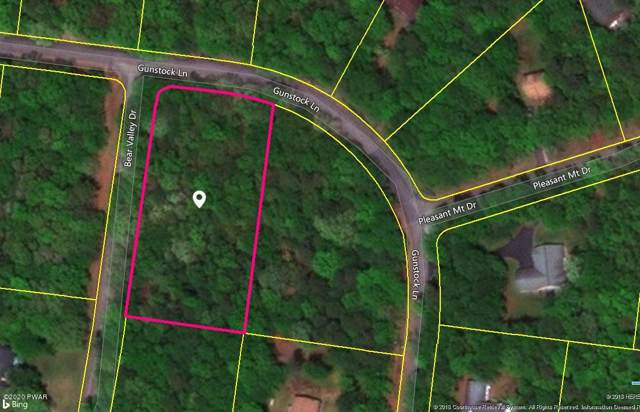 Lot-177 Bear Valley Dr, Tafton, PA 18464 (MLS #20-61) :: McAteer & Will Estates | Keller Williams Real Estate